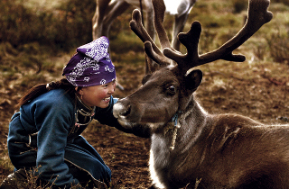 Girl with reindeer in Mongolia